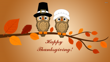 Thanksgiving Owls - Corvallis Family Medicine